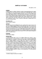 Pages from Investigacion_Genero_16-2.pdf